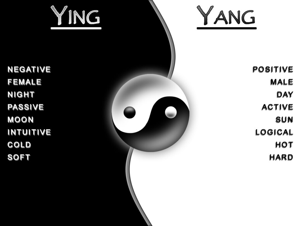 جهان بینی ثنویت ین و یانگ شرک